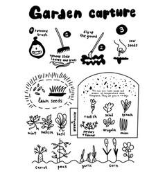 garden capture growing plants poster about summer vector image
