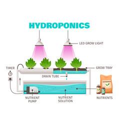 Hydroponics farming concept vector
