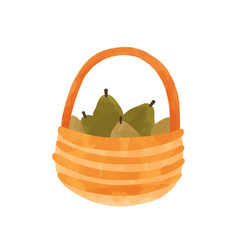 pears in basket hand drawn vector image
