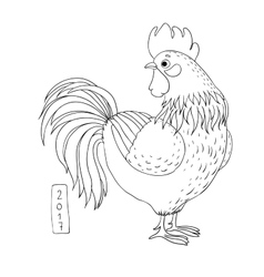 Rooster Cartoon cock vector