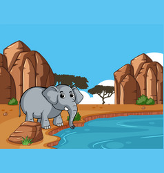scene with elephant by the pond vector image