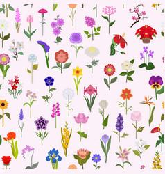 Your garden guide top 50 most popular flowers vector