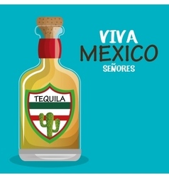 bottle tequila drink mexican isolated vector image