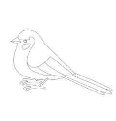 Bird red - cheeked cordon vector
