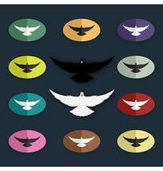 group bird pigeon vector image