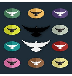group of bird pigeon vector image