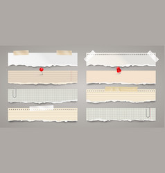 Long ripped paper strips with adhesive tape vector