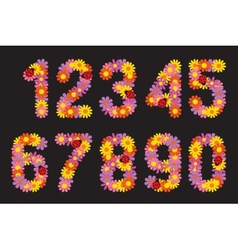 Numbers of colors vector image