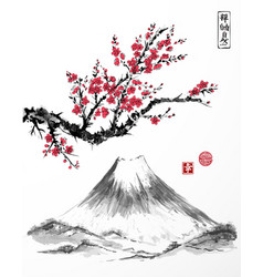 Oriental sakura cherry tree in blossom and vector