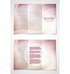 Trifold brochure design vector image