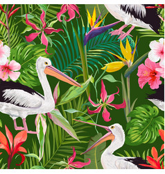tropical nature seamless pattern with pelicans vector image