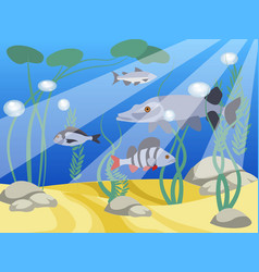 underwater world a reservoir animals and nature vector image