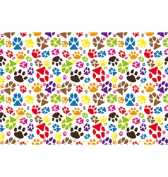 Animal paws vector image