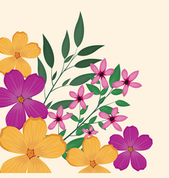 flowers leaves flourishes image vector image
