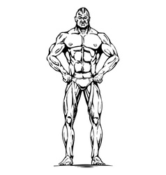 athletic man vector image