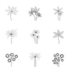 Palma icons set outline style vector image