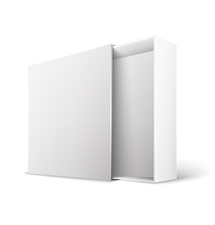 Product Package Box vector image