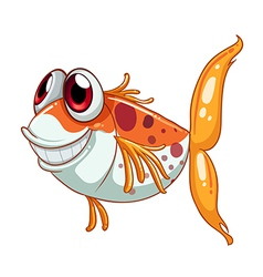 An orange fish with big eyes vector image