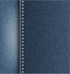 Jeans texture with side strip vector