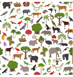 Tropical and subtropical rainforest biome natural vector