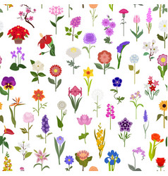 Your garden guide top 50 most popular flowers vector