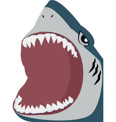 shark open mouth vector image