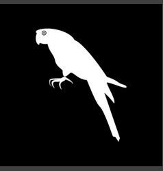 parrot it is icon vector image vector image