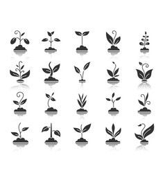 Grass black silhouette icons set vector