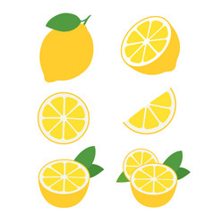 Resh lemon fruits collection vector