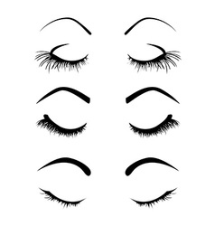 Set of four eyelashes vector image