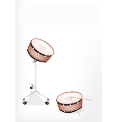 Two Beautiful Snare Drum on White Background vector