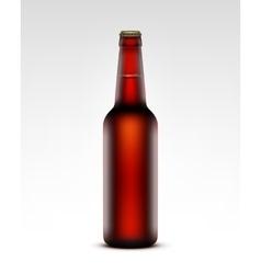 Glass Transparent Brown Bottle of Dark Red Beer vector image vector image