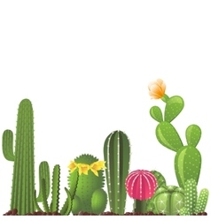 Different types of cactuses vector image