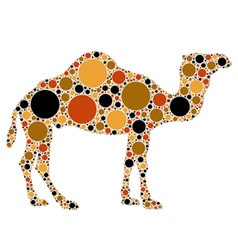 dotted camel vector image