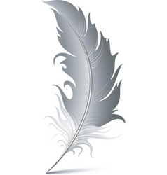 feather pen vector image vector image