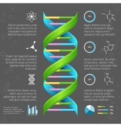 Infographic template with DNA structure for vector image vector image