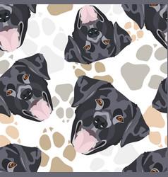 Dog paws pattern black labrador vector