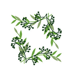 green sprigs with berries frame natural design vector image