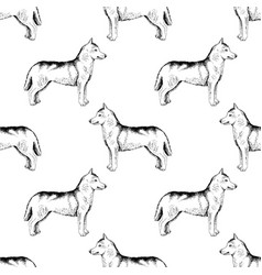 seamless pattern with hand drawn siberian huskies vector image