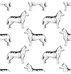 Seamless pattern with hand drawn siberian huskies vector