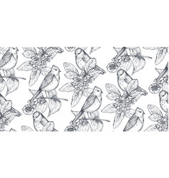 seamless pattern with ink hand drawn birds on vector image