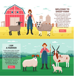 Sheep breeding flat banners vector