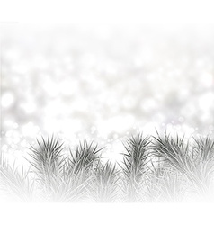 Silver christmas background with spruce branches vector
