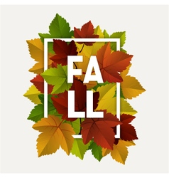 fall decoration frame vector image