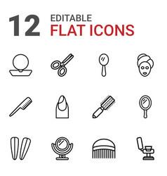 12 salon icons vector
