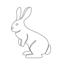 bunny stands still vector image