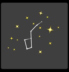 Constellation vector