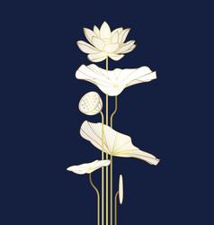 Luxury lotus cover design template vector