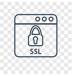 Ssl concept linear icon isolated on transparent vector