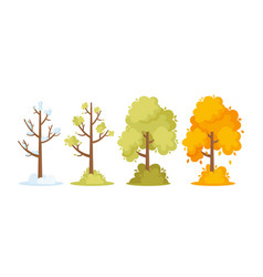 Winter spring summer and autumn seasons concept vector